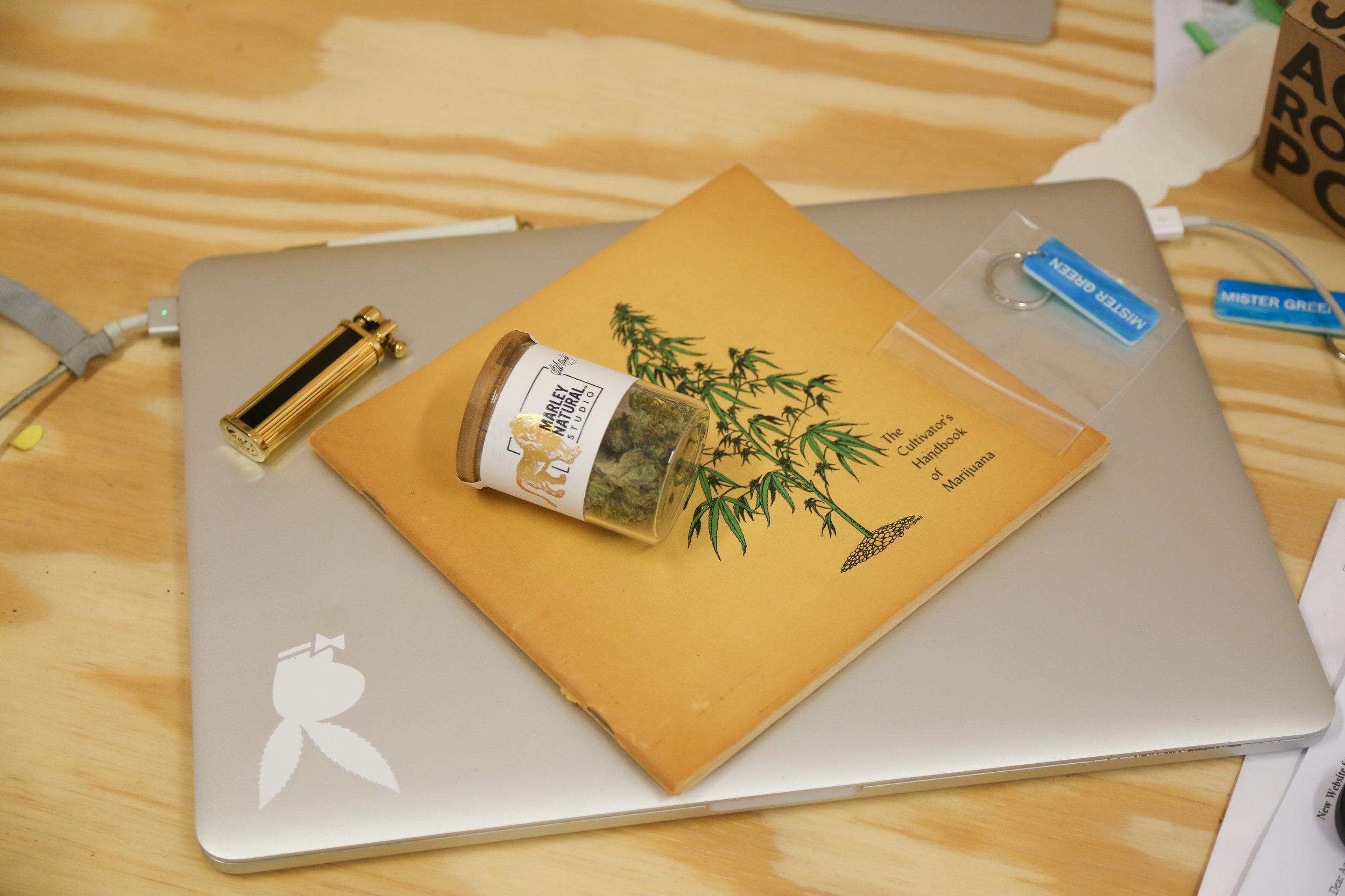 marley-natural-mister-green-life-store (2).jpg