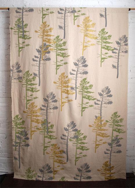 Windy Spruce Design