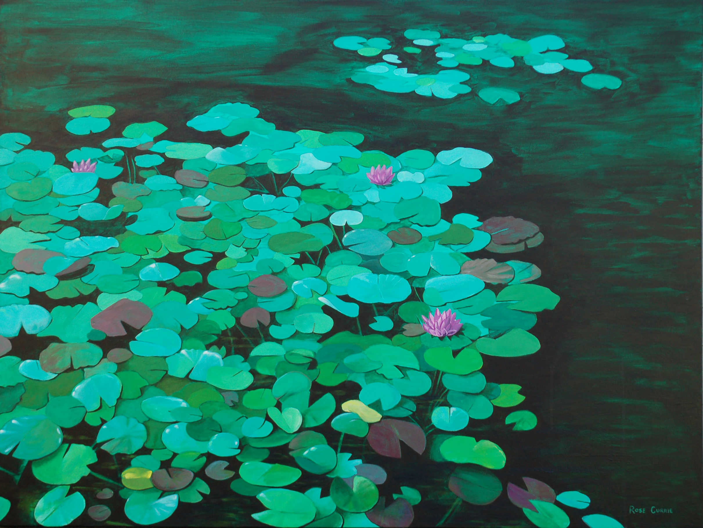 Water Lilies by the Parkside