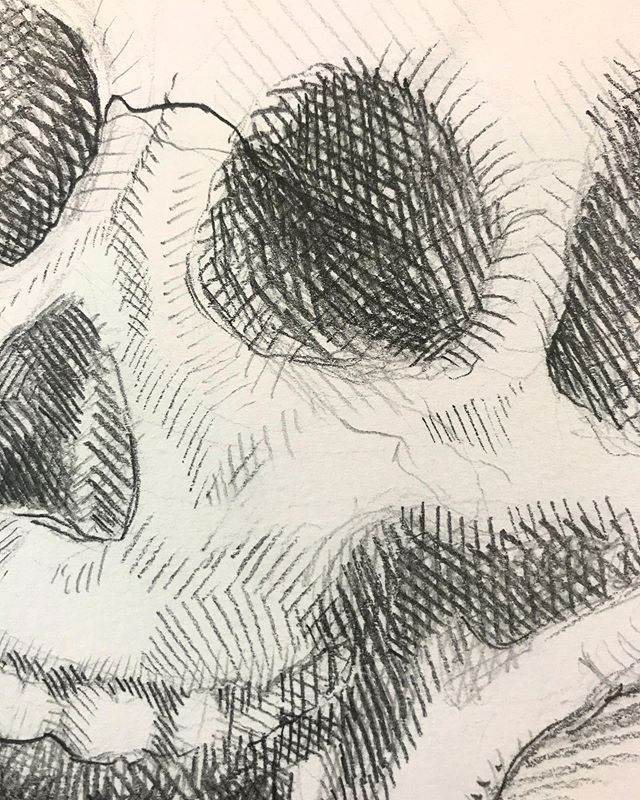 💀 Did you guys know I love skellymans? . . . #lifedrawing #drawing #sketch #sketchbook #skull #pencildrawing #illo #pencil #crosshatching
