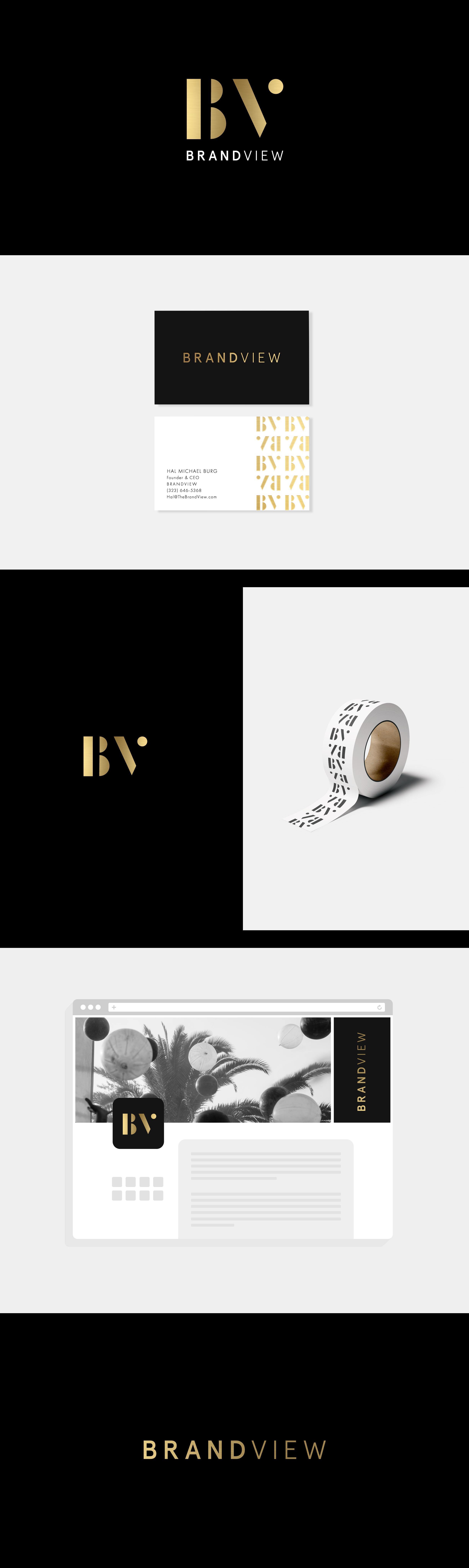 BV-Portfolio.png