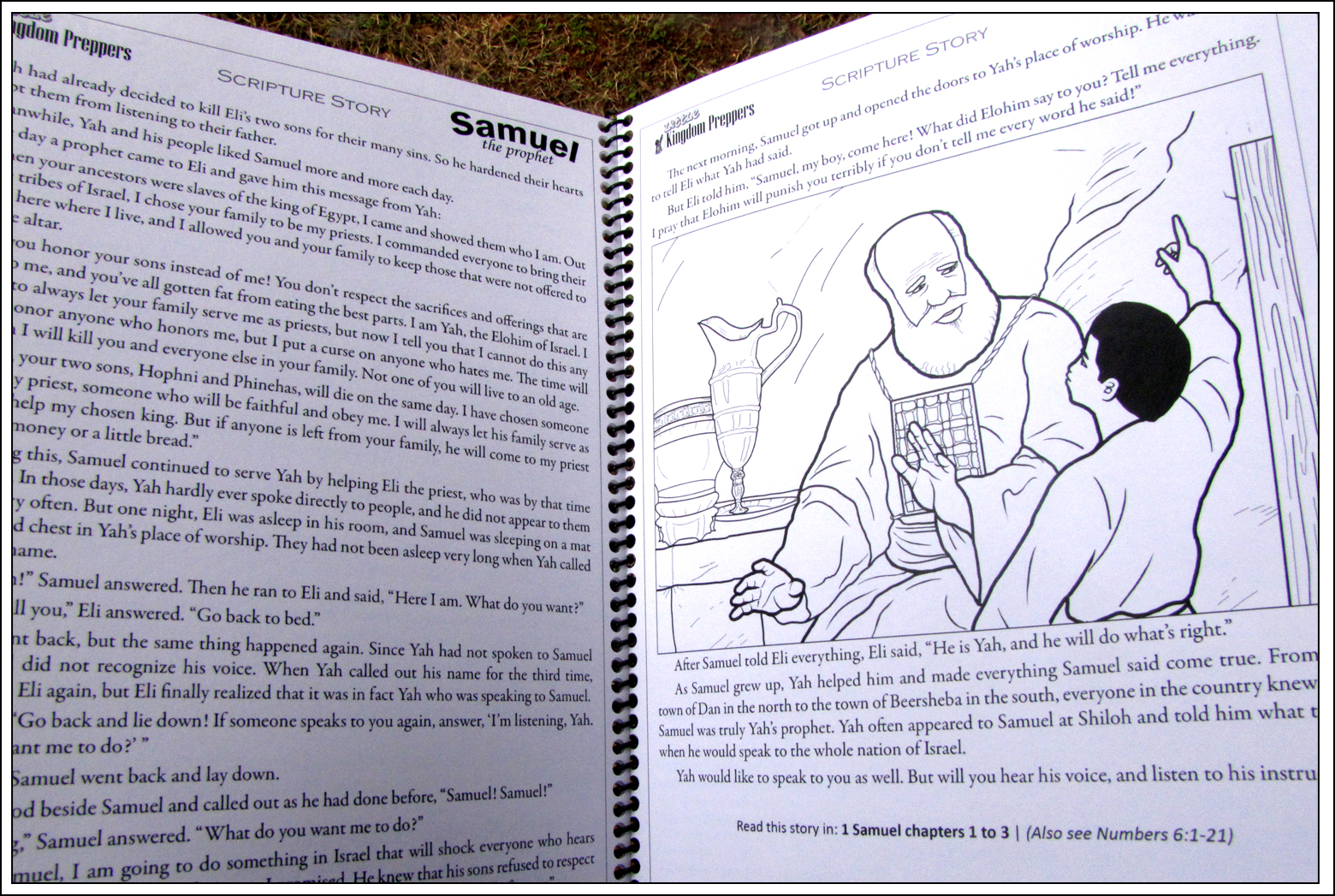 Sample pages, spiral-bound