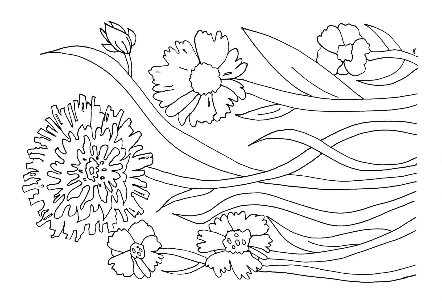 flower_front.jpg