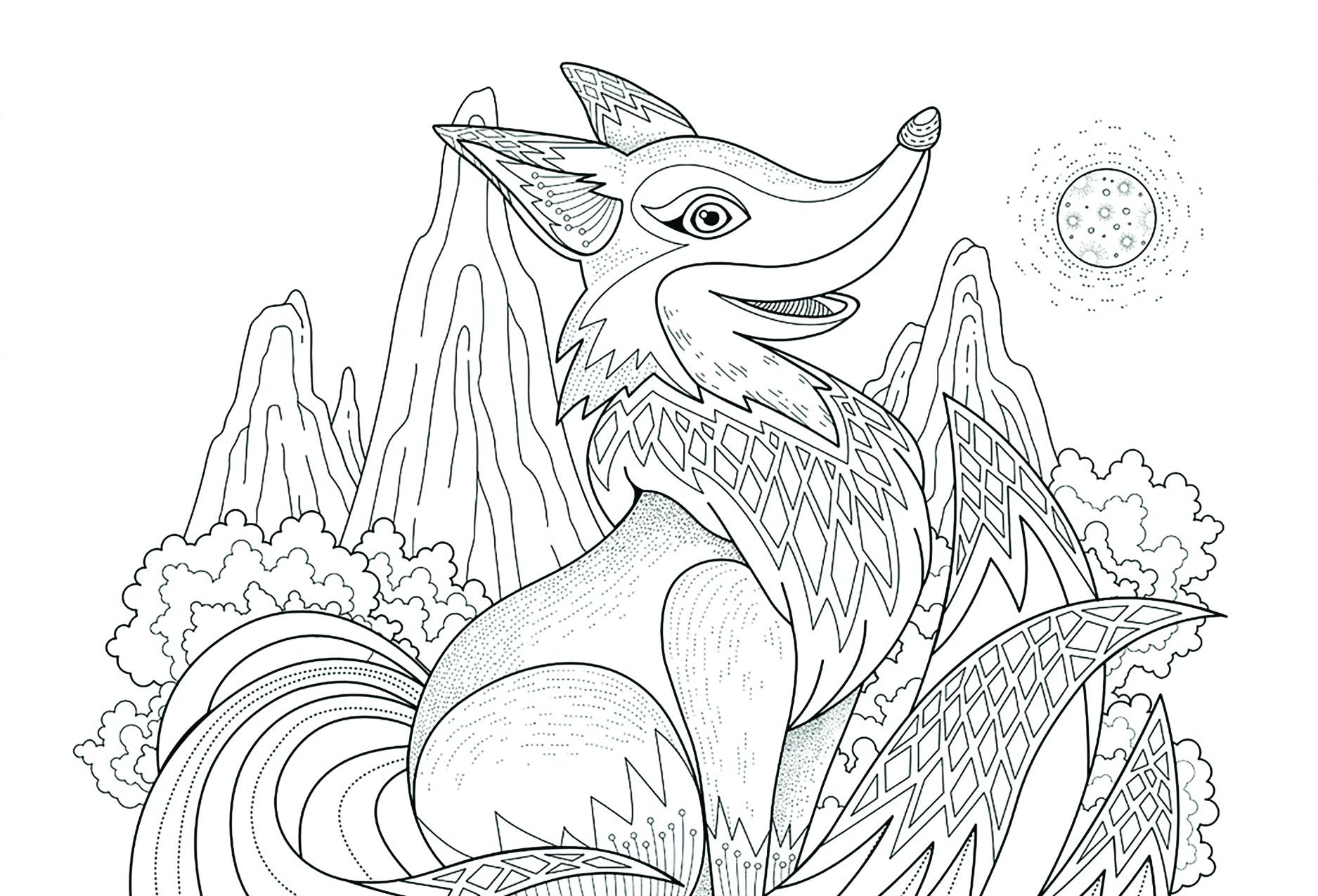 fox_Front2.jpg