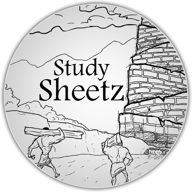 study-sheetz-01-circle.png