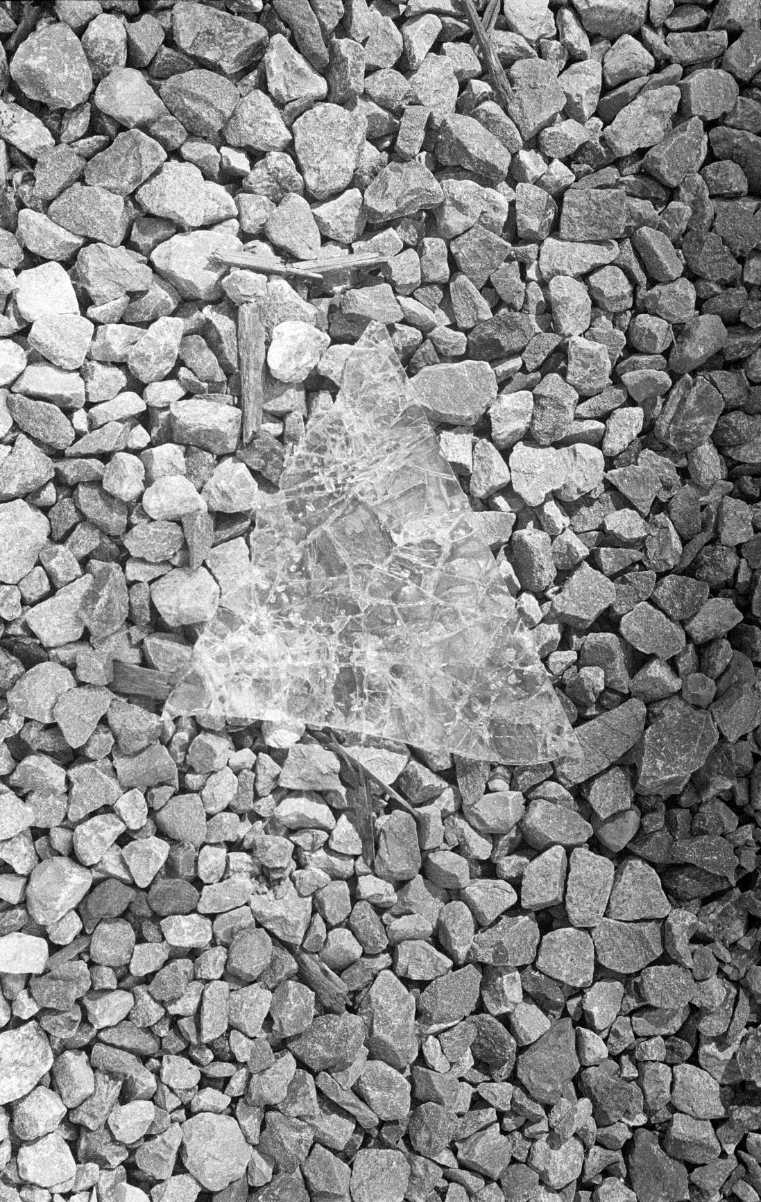 Black&White--6.jpg