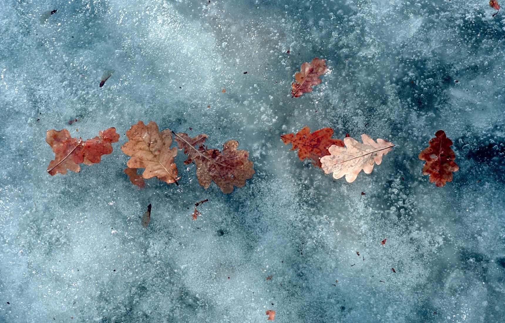 Colour-4.jpg