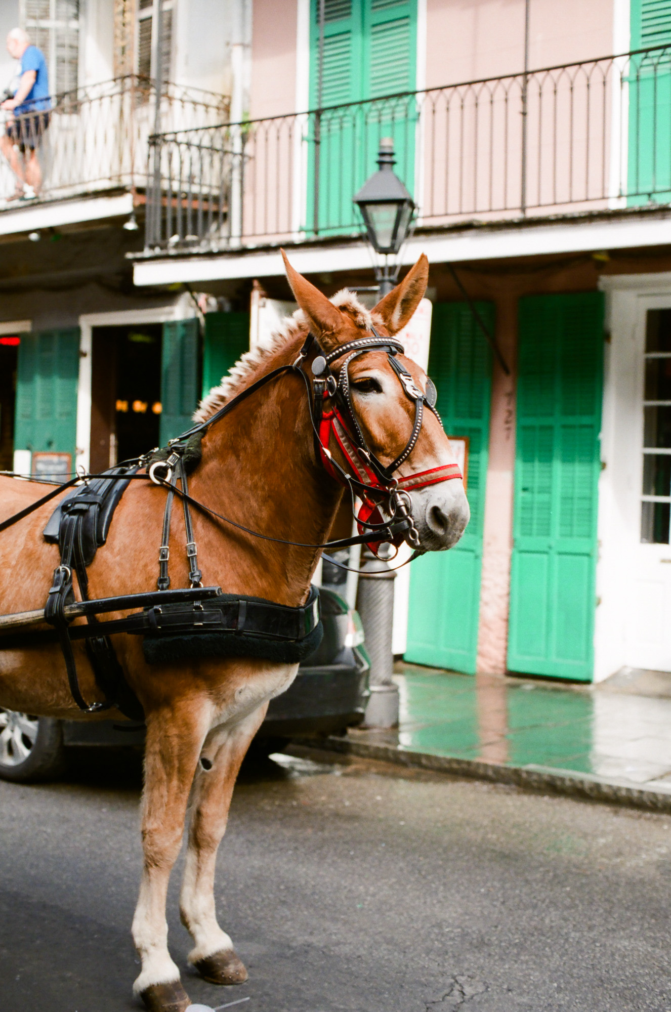 NEWORLEANS2013_©kristinmyoung_SquareLORes-3.jpg