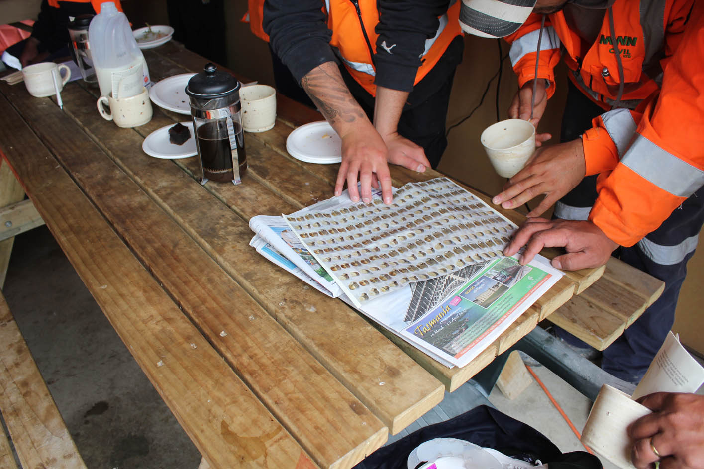 Public Share, Irregular allotments , Fulton Hogan site tearooms, 29 October 204