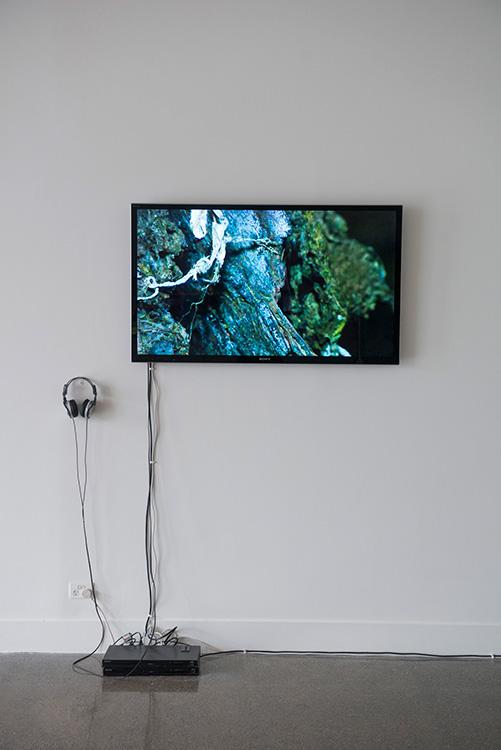 Dominic Redfern, Jiang , 2014, two channel digital video