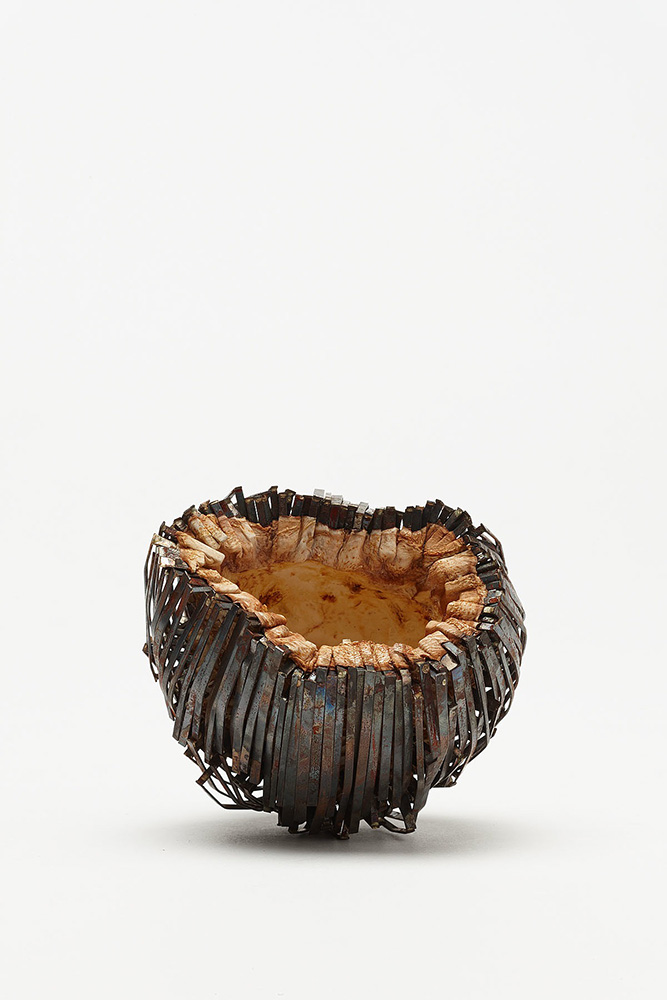Ruby Aitchison,  Untitled  2013, Mild steel, celeriac, Photography by Jeremy Dillon