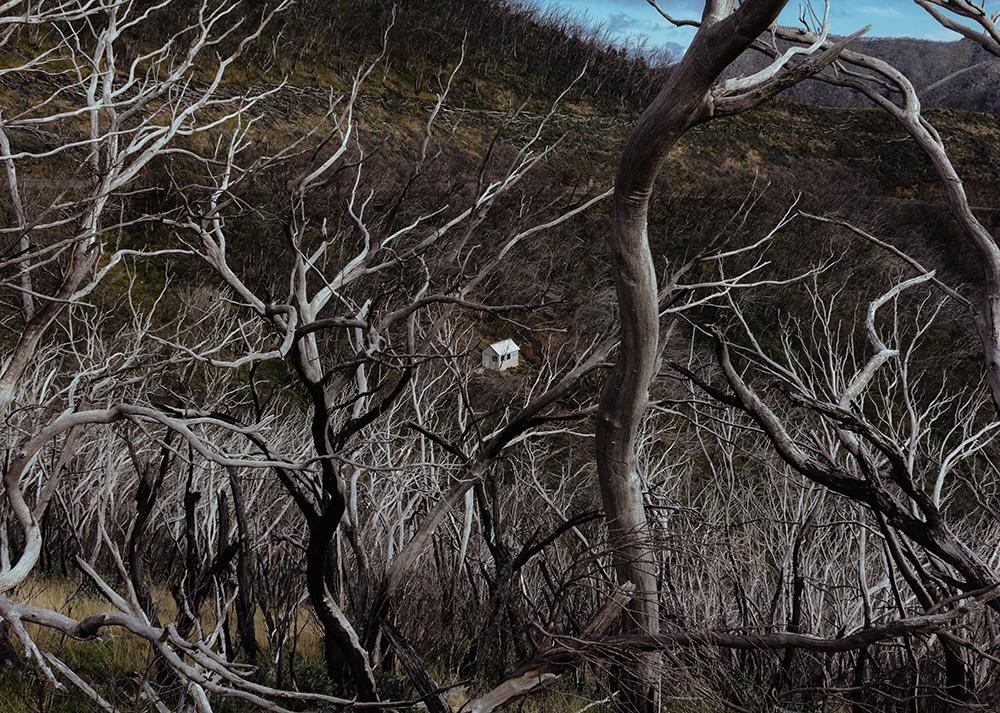 Dominik Krupinski,  Hut (Mt Hotham) , 2014, Digital Photograph