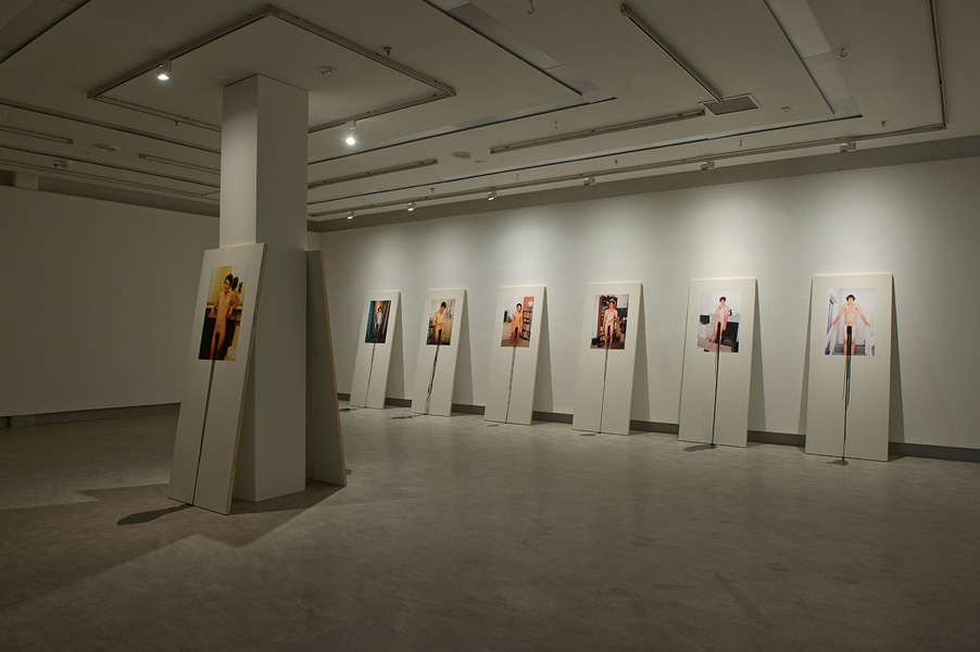The Gift and the Curse Installation
