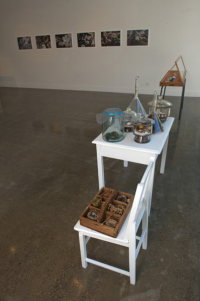 Sally Cleary, Re-Collections Exhibtion Installation
