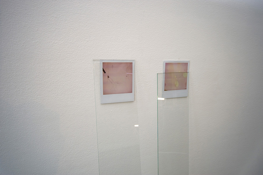 James Geurts,  Drawing : High Tide – Low Tide , 2011, Polaroid and glass installation, 115 x 30 x 5 cm