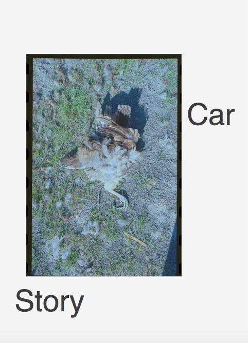 Siegmund Skalar , Car Story,  2018