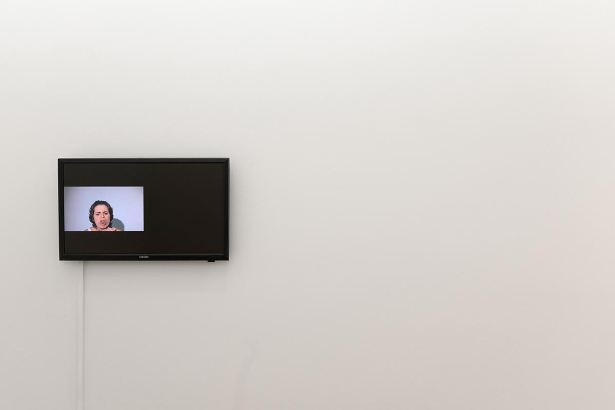 Maria Camila Quintero Arango,  A series of Misunderstandings , 2018, video, 2m 27s
