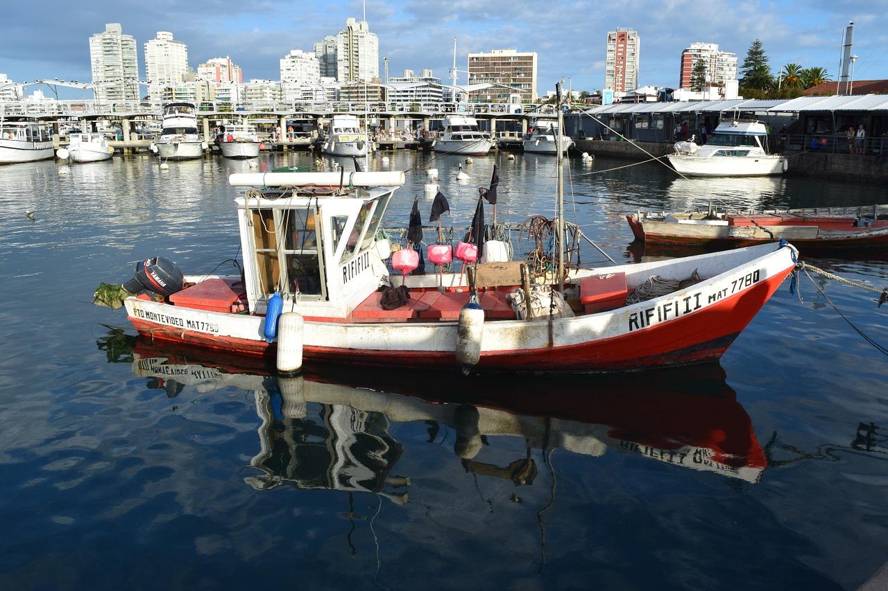 fishing-1445981_1280.jpg