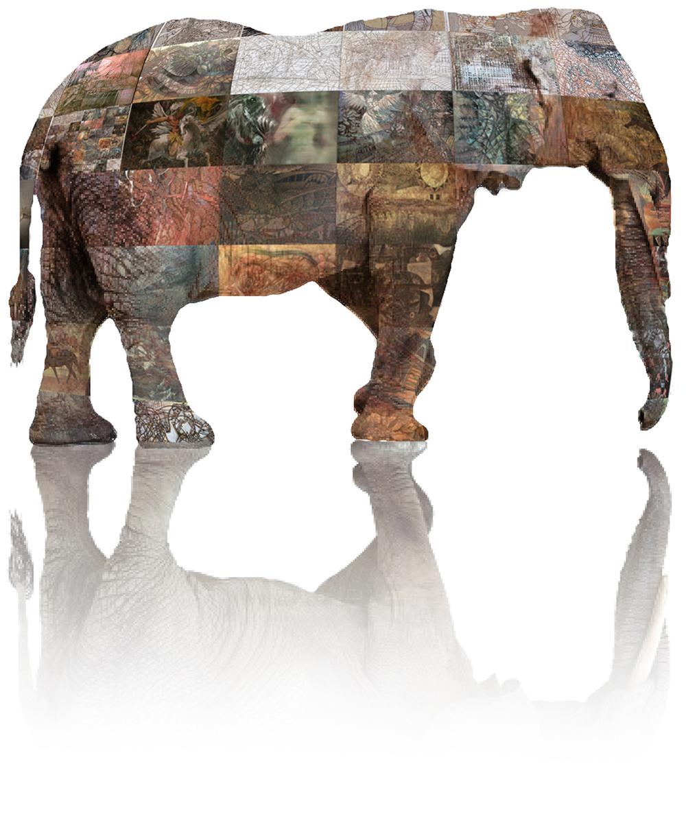 elephant composite3.jpg