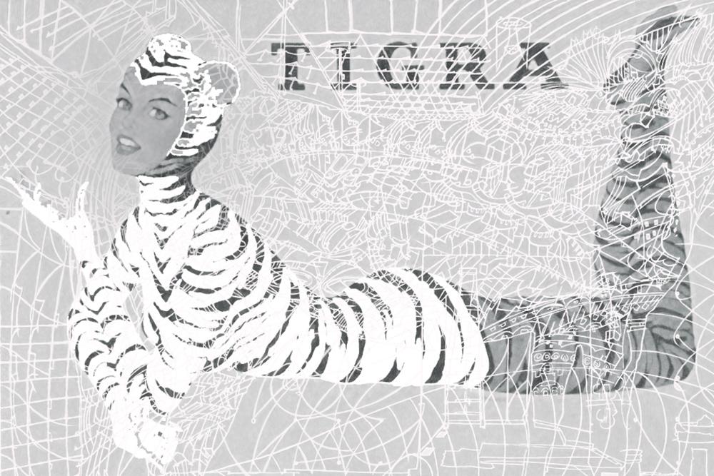 tigra3.jpg
