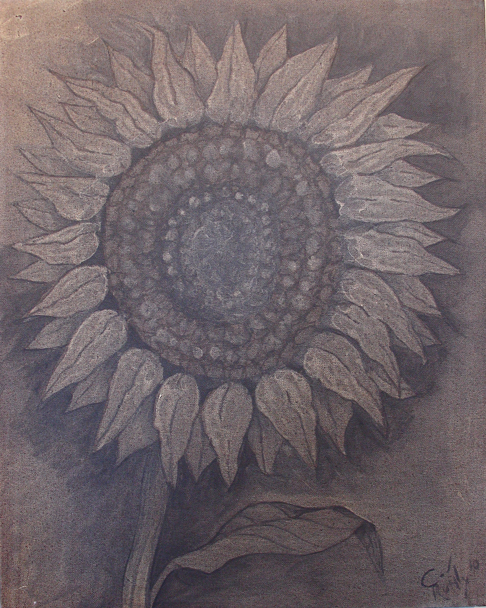 sunflower in penumbra.jpg