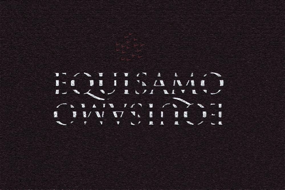 Equisamo Logo.jpg