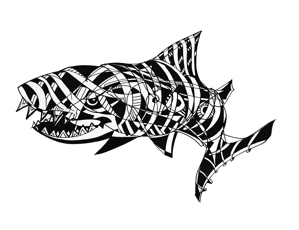 Shark-CRR1.jpg