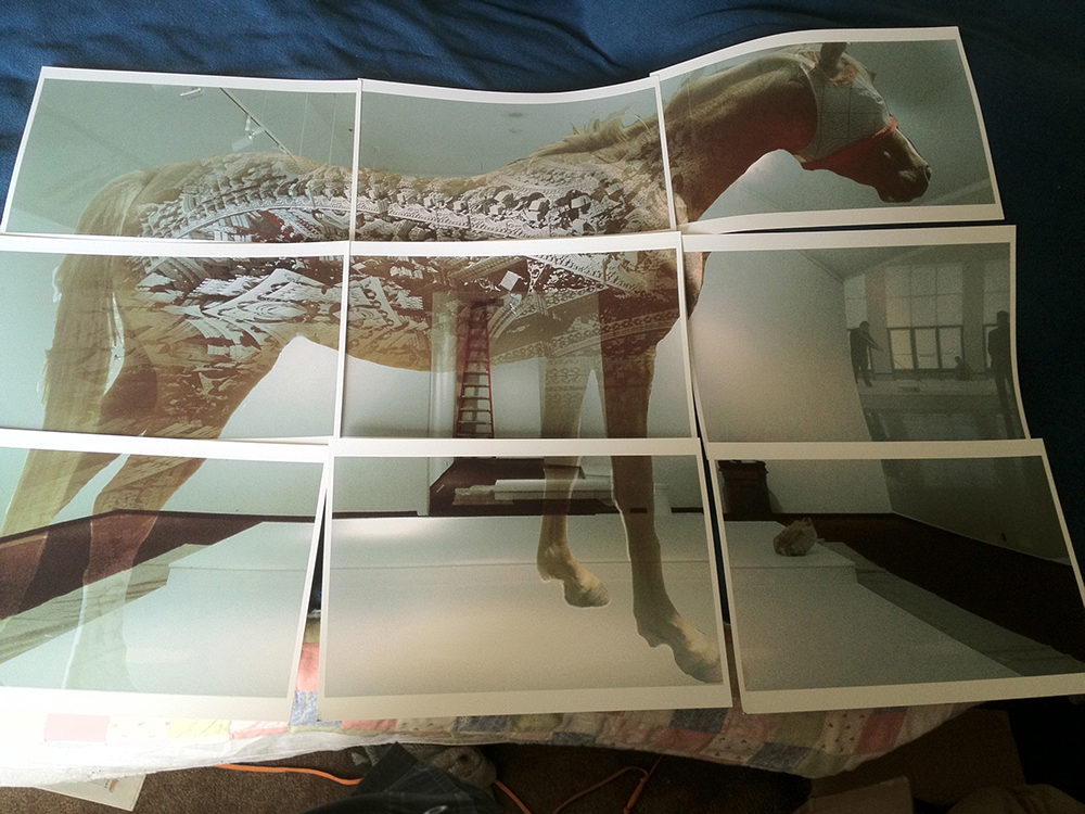 horse prints.jpg