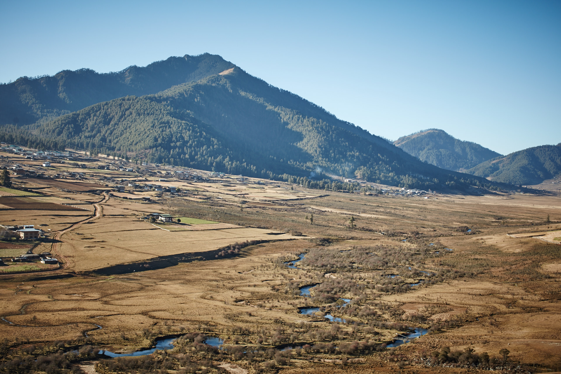 Hiking in the Phobjikha Valley where Black-necked Cranes visit every winter