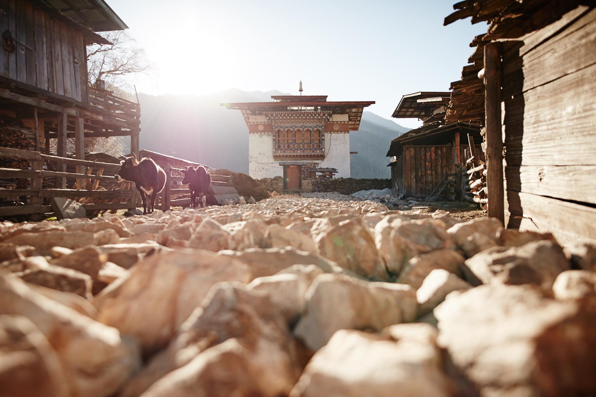 Phobjikha Valley - Kingha Tang Potato Farmers _BSR0468.jpg