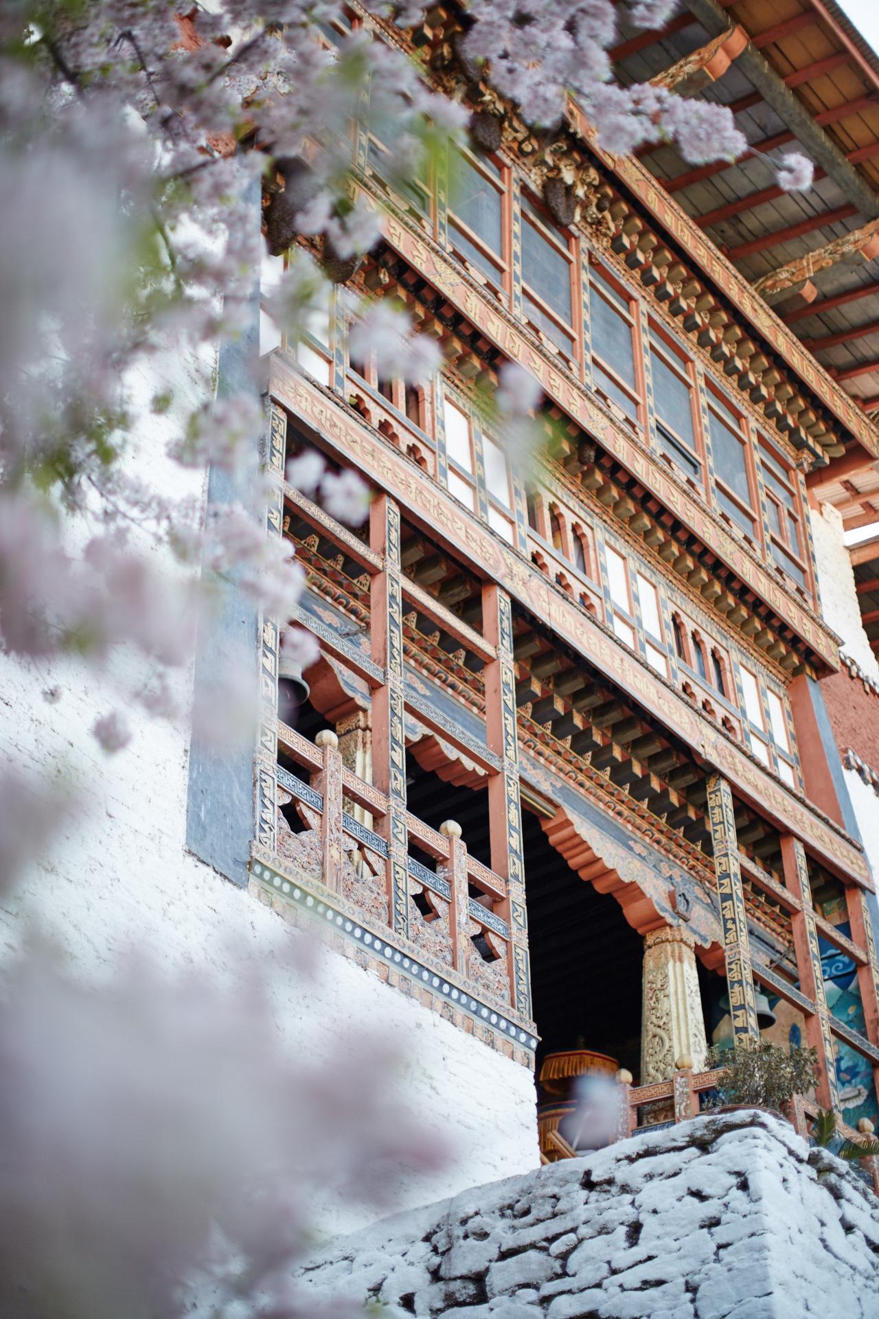 Punakha Dzong - _BSR9076.jpg