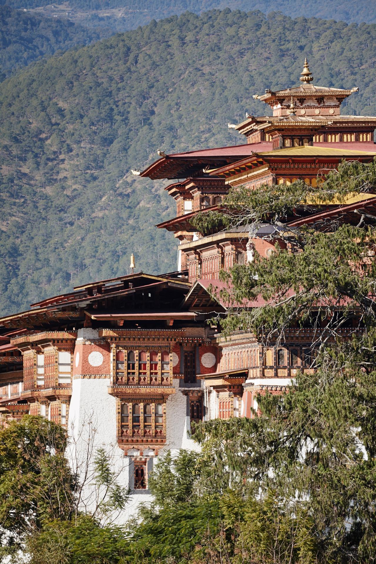 Punakha Dzong - _BSR9055.jpg