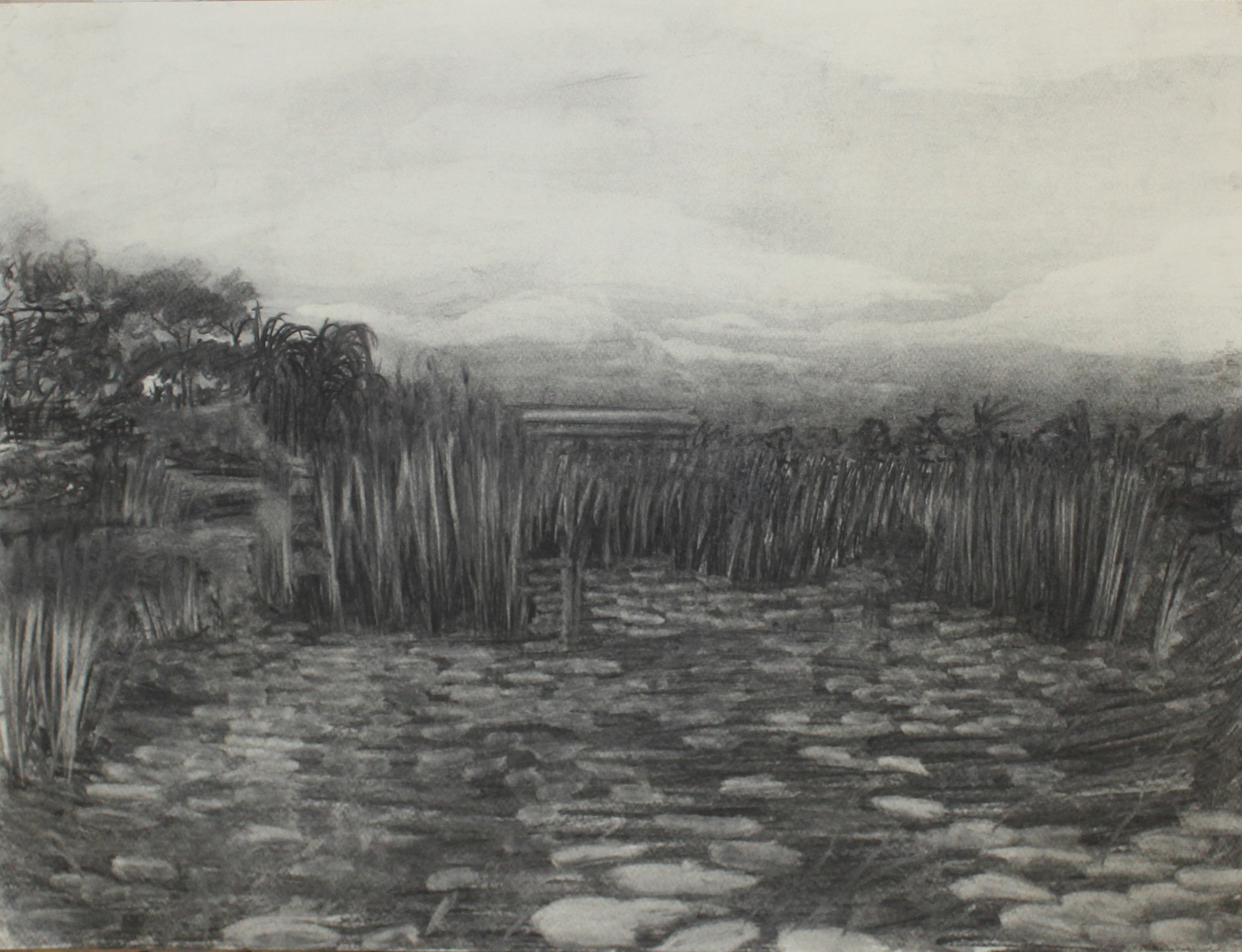 "That forest shore-1 / charcoal on paper/ 33""X 20""/2017"