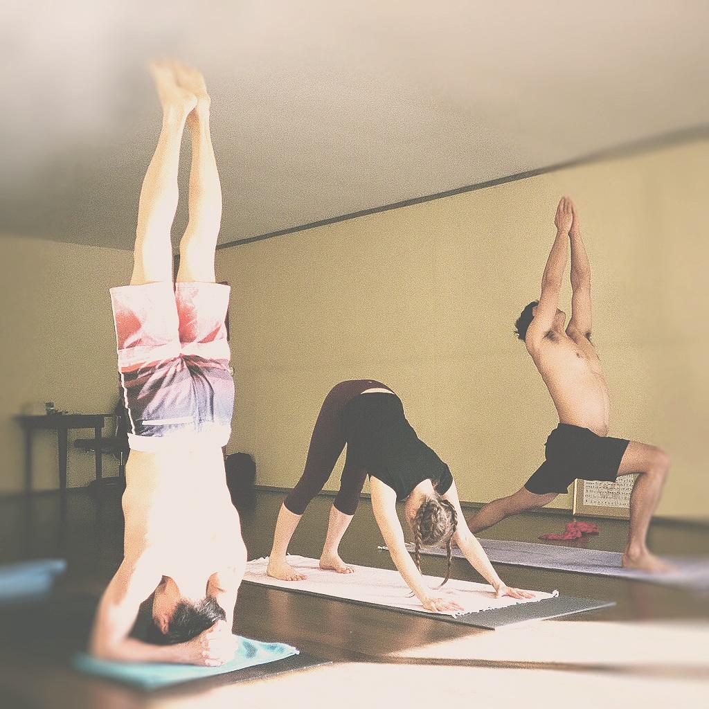 mysore practice yoga.jpg