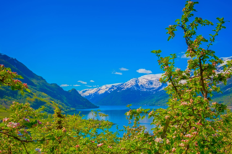 Fjord-Hardangerfjord-lofthus-2779.jpg