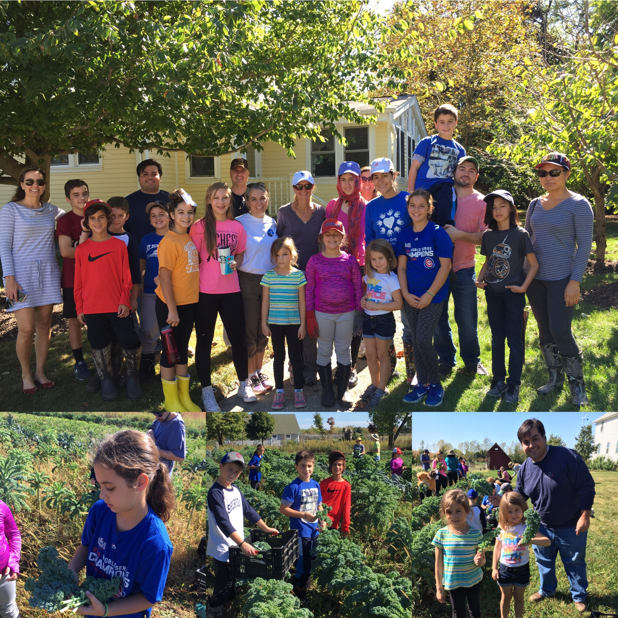 Fall Youth and Family outing at Prairie Crossing Organic Farms 2017