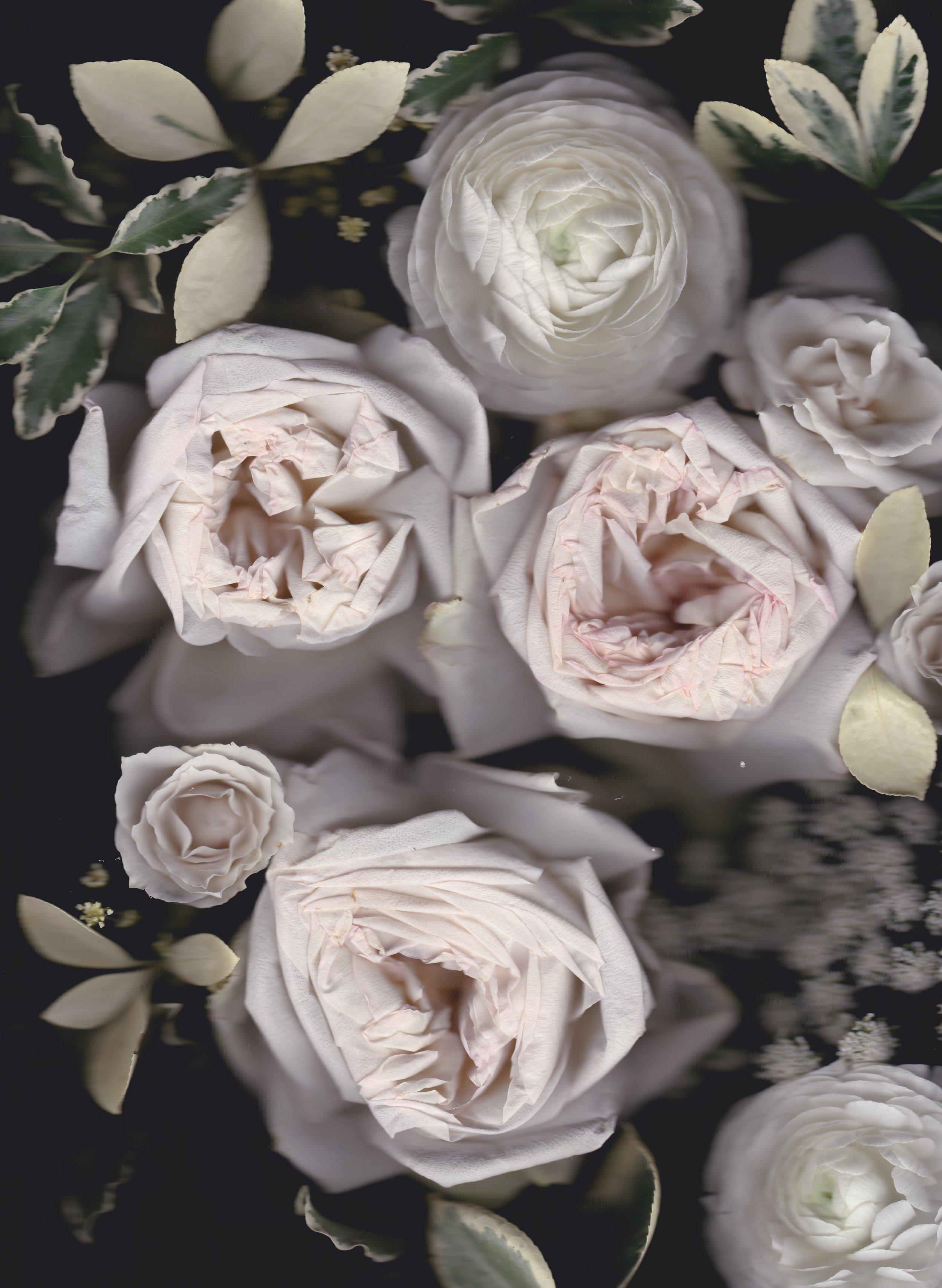 flowerscanjuly2018 2.jpeg