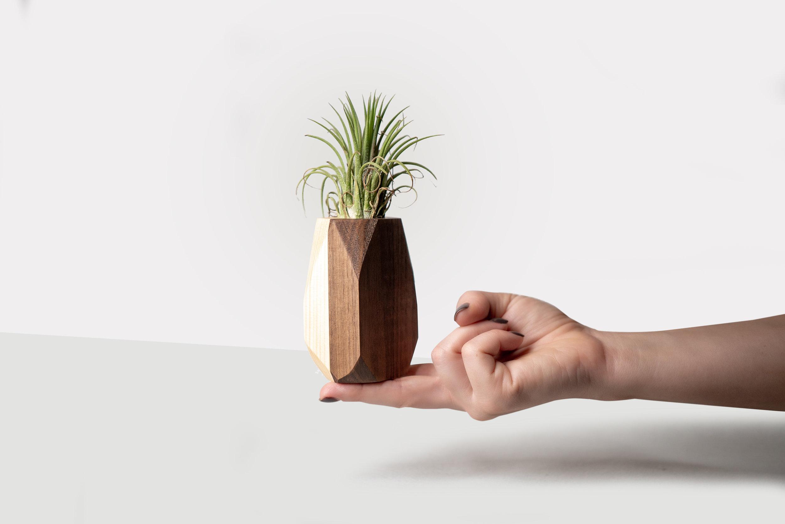 Walnut and Pine Geo Planter