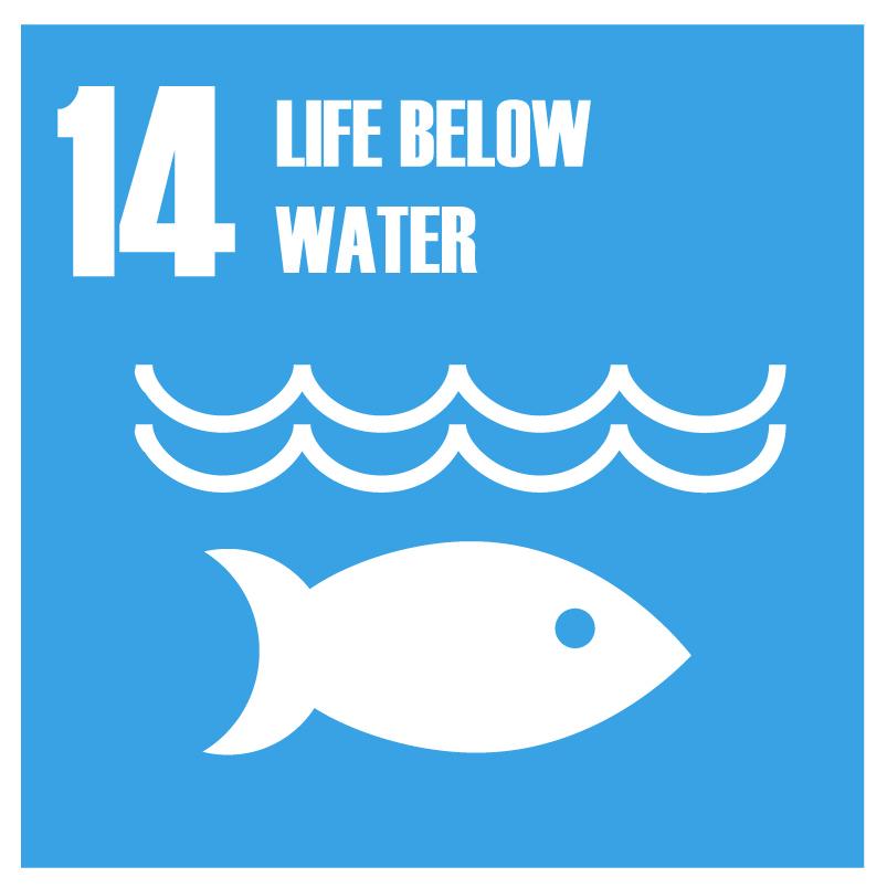 Global Goals-14.jpg