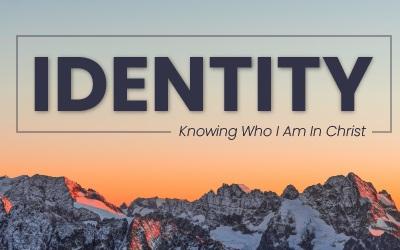 Social+-+Identity01.jpg