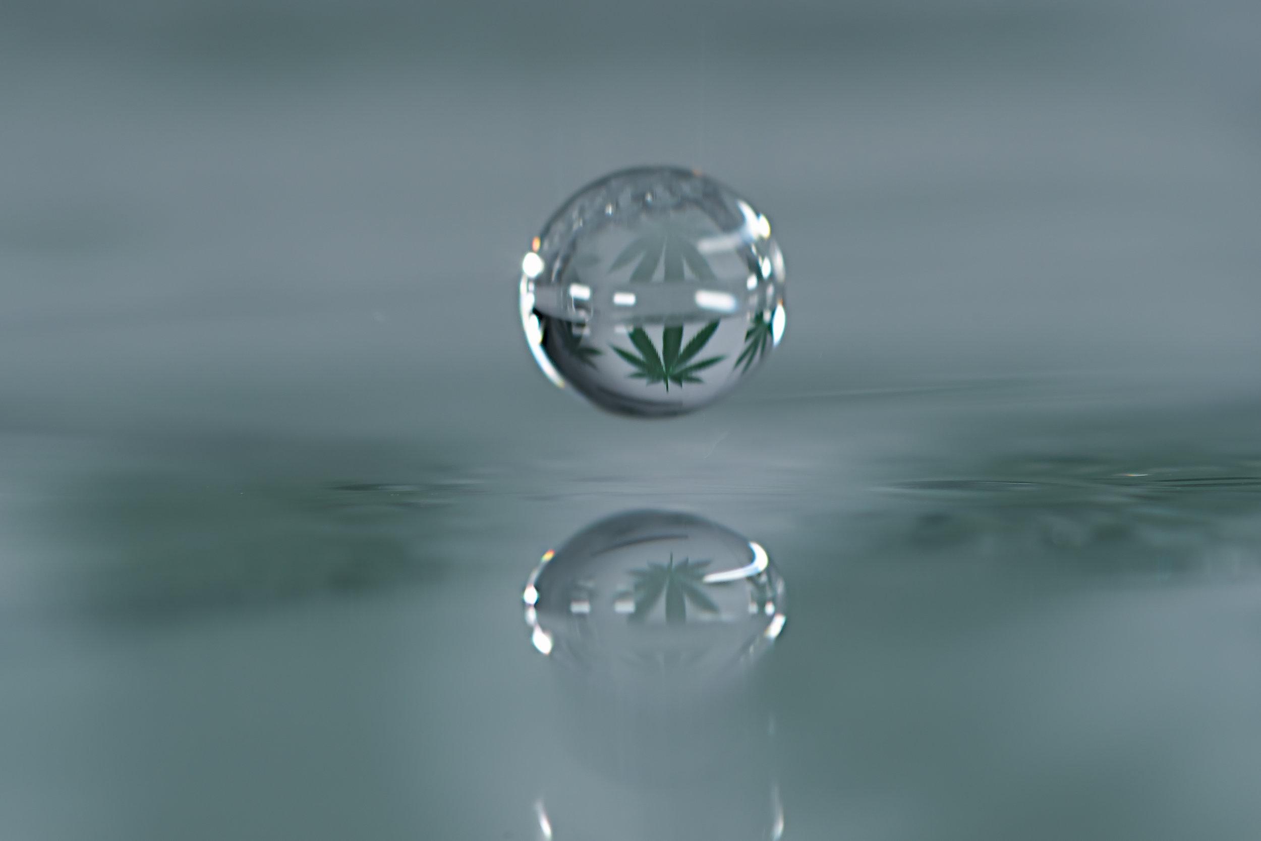 Waterdrop cannabis leaf