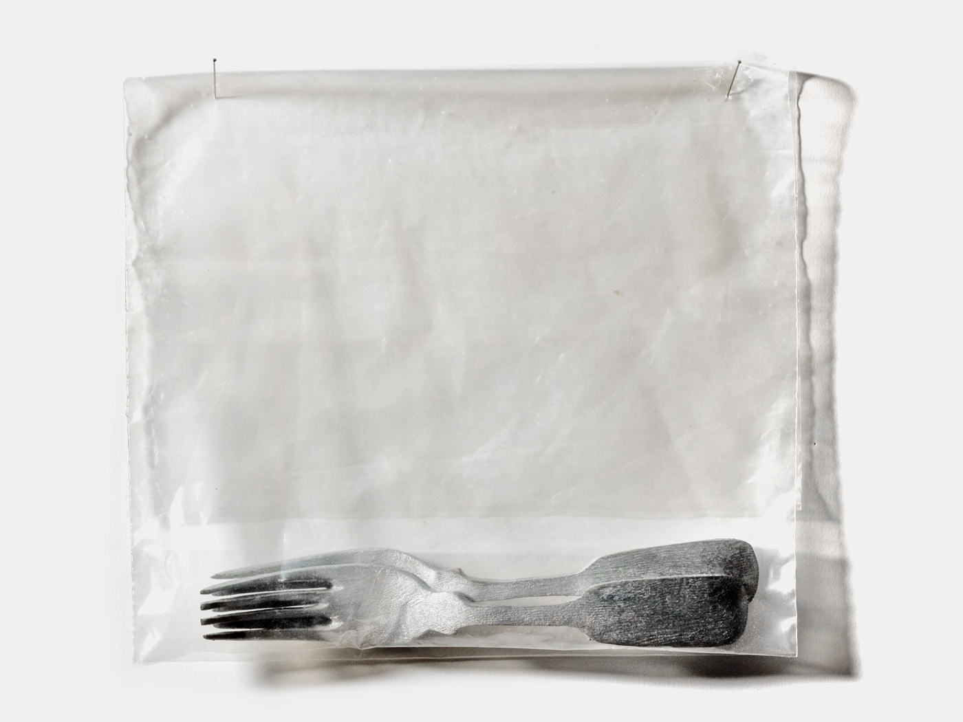Forks / Carved & Painted Wood Plastic Bag. 2002.