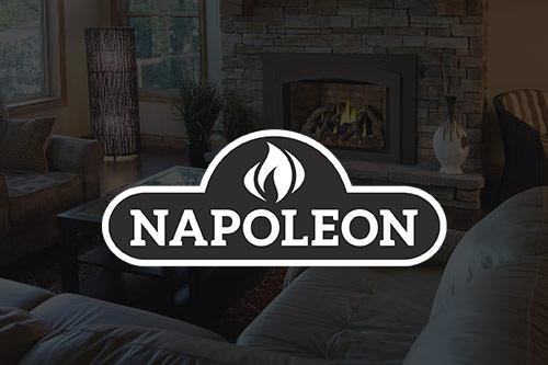 NapoleonGas Inserts Chim chimney Wenatchee Fireplace-NCW.jpg