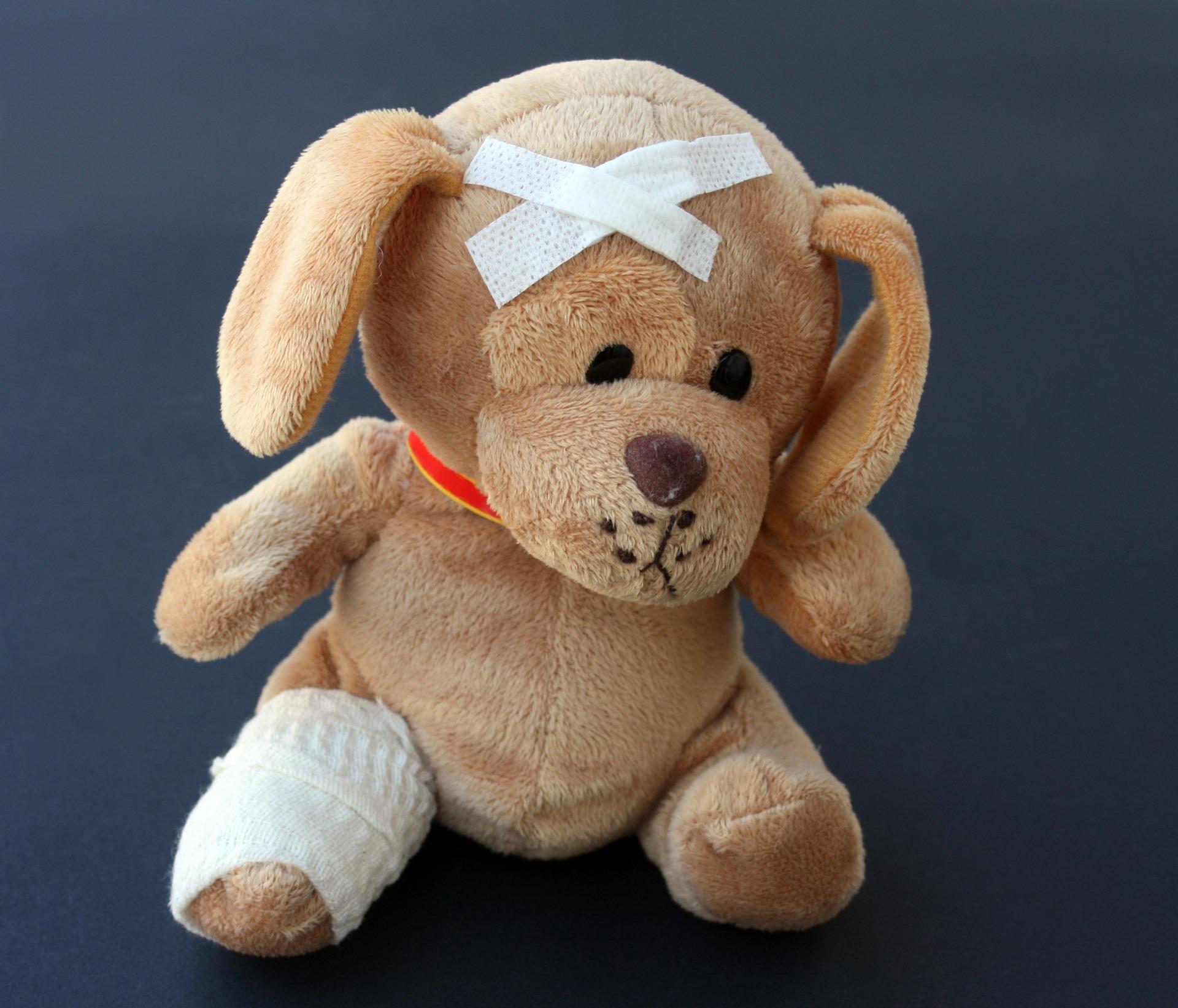 teddy-242851_1920.jpg