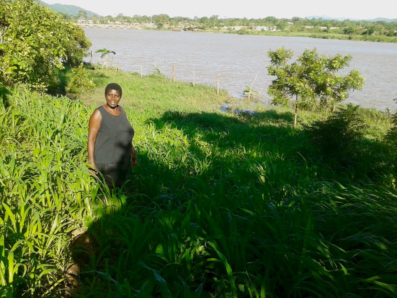 The simple yet effective hippo fence seen along the river prevents the hippos from eating their food.