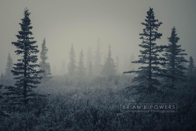 Alaska Denali_012.jpg