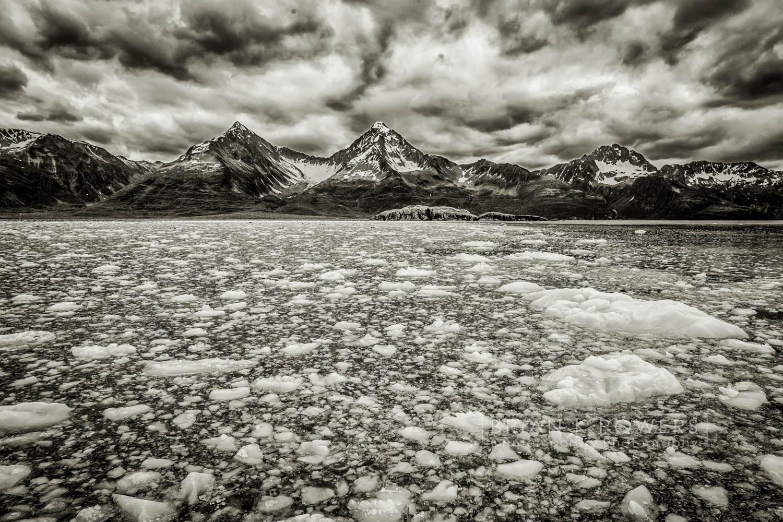 Alaska Kanai Fjord Tour_087-01.jpg