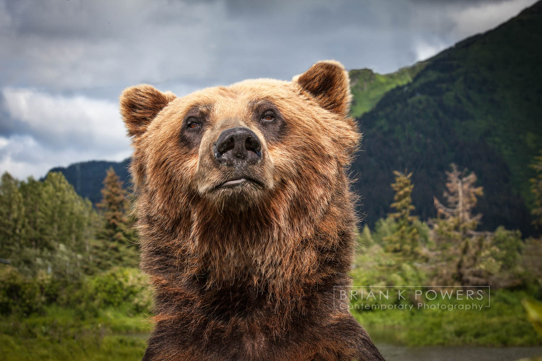 Alaska Wildlife Perserve_067.jpg