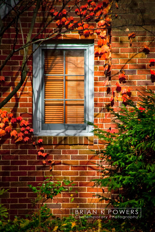 Ann_Arbor_Michigan_Fall_Window_001