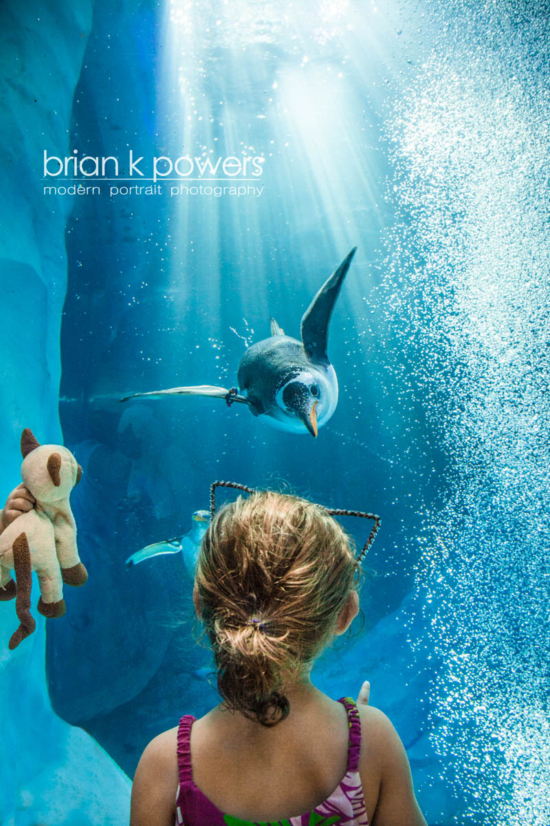 Brian_K_Powers_Photography_Animals_687.jpg